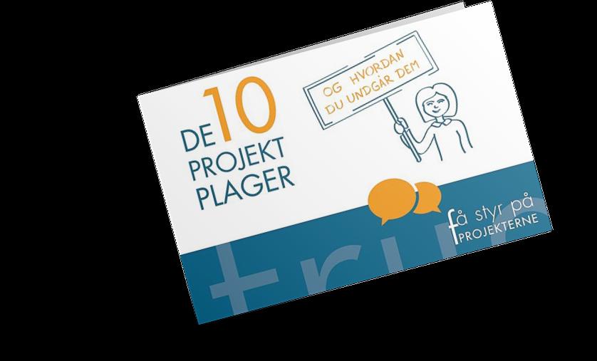 E-bogen De 10 projektplager og hvordan du undgår dem