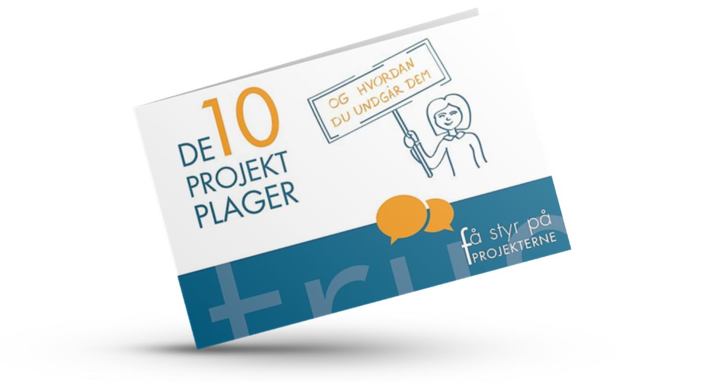 Bogen 'De 10 projektplager'